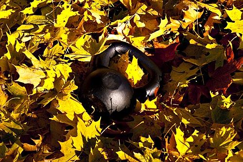 Hoera, herfst!